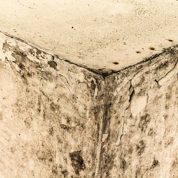 Mold and Mildew in your attic
