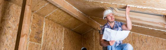 mold crawl space inspection