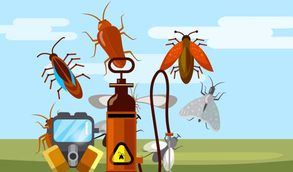 pest control services in bay area