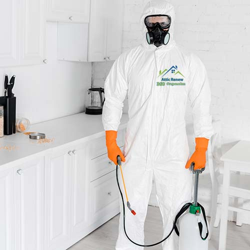 pest control and proofing