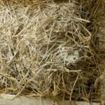 straw insultion
